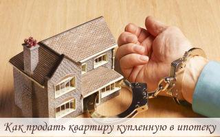 Как продать квартиру купленную в ипотеку