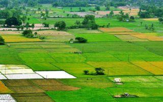 Оформление права собственности на земельные участки
