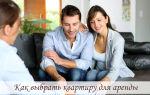 Как выбрать квартиру для аренды: проверка недвижимости и хозяина