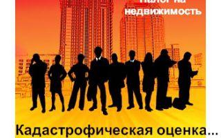 Принят закон о налоге на недвижимость физических лиц