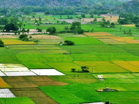 Оформление собственности на земельные участки